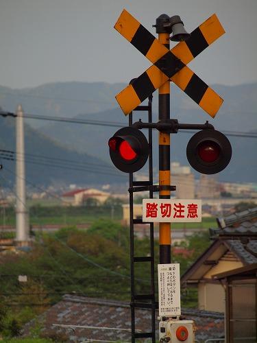 P4307224.jpg