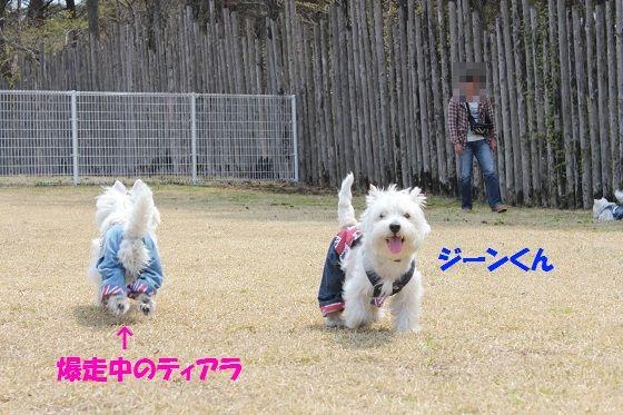 130502012-1.jpg