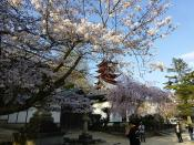 hiroshima36.jpg