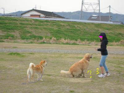 snap_tikagenoko414_20124523405.jpg