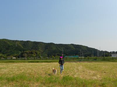 snap_tikagenoko414_2012500122.jpg