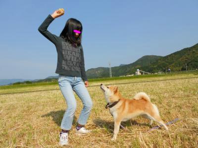 snap_tikagenoko414_20125623579.jpg