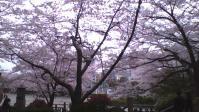 2013-03-30-170233.jpg