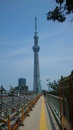 DSC_0007-10tokyo sky tree
