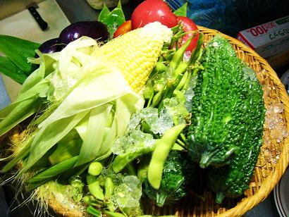夏野菜セット1 (5)