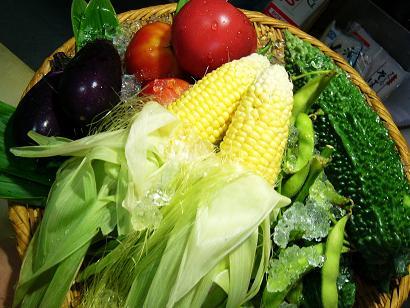 夏野菜セット1 (4)