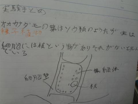 DSC01326_convert_20120727114224.jpg