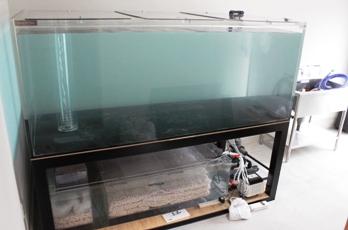 水槽設置4