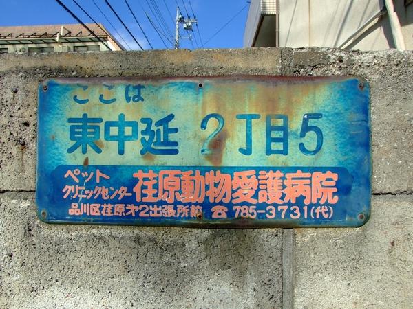20121103175.jpg
