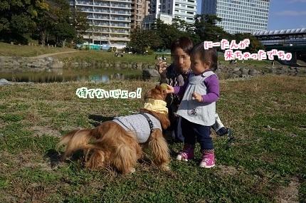 嵐丸 2014.11.17-5