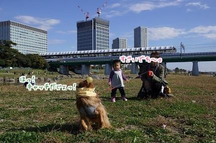 嵐丸 2014.11.17-2