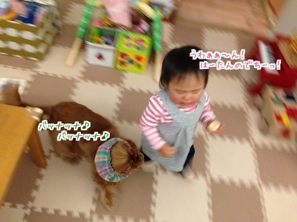 嵐丸 2014.11.21-4