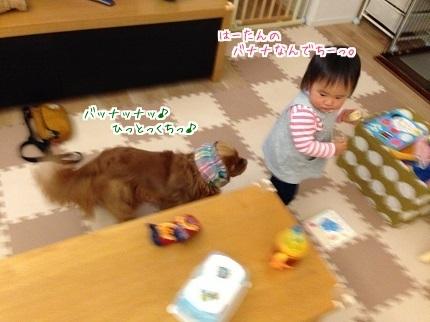 嵐丸 2014.11.21-3