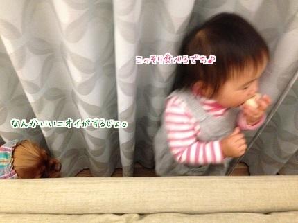 嵐丸 2014.11.21-1