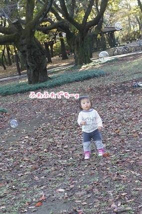 嵐丸 2014.11.26-6