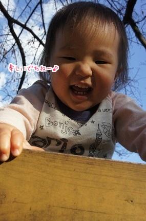 嵐丸 2014.11.26-5