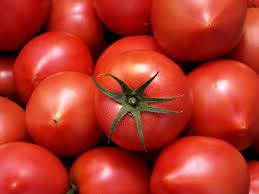 tomato_20130321201233.jpg