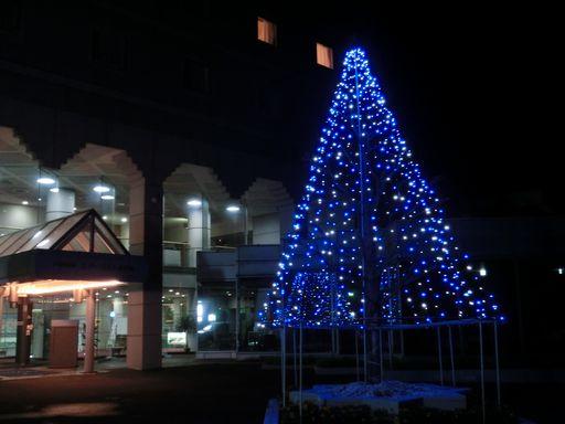 starlight hotel 1