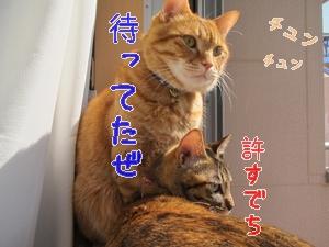 IMG_2673.jpg
