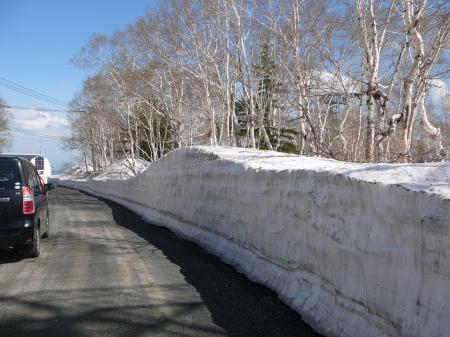 作業道路脇は1m越えの雪の壁