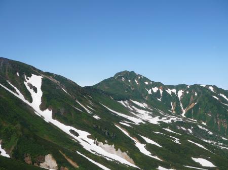緑の山肌に雪渓の白が映えるねえー