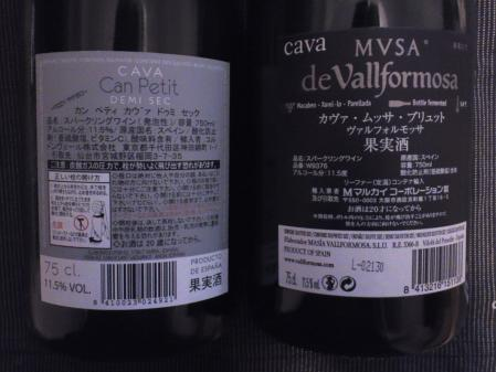 CAVA2.jpg