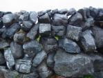 とにかく石が多い