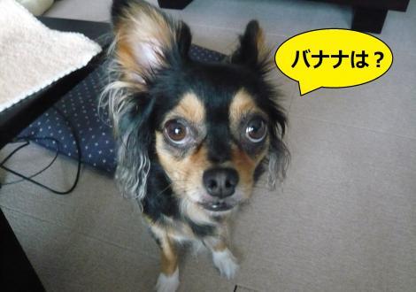 縺ー縺ェ縺ェ1_convert_20120806153428