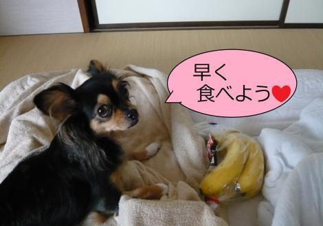 縺ー縺ェ縺ェ9_convert_20120806153721
