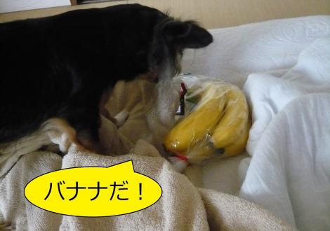 縺ー縺ェ縺ェ8_convert_20120806153659