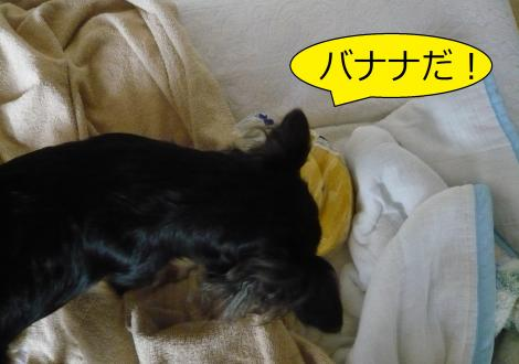 縺ー縺ェ縺ェ7_convert_20120806153631