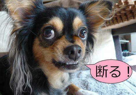 譁ュ繧祇convert_20120811131421