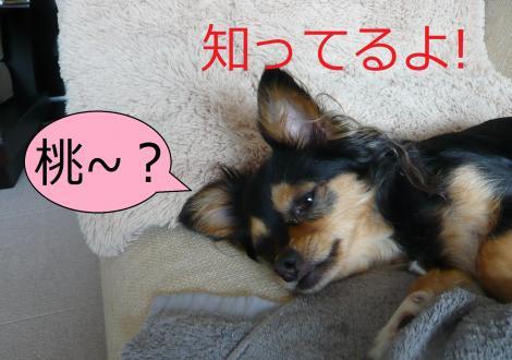 繧ゅb・狙convert_20120815223358