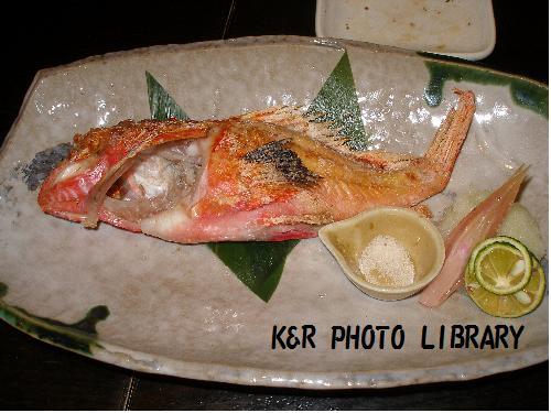 本日の一本魚昆布塩焼き