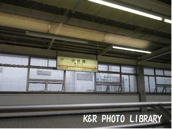 8月16日小田原駅