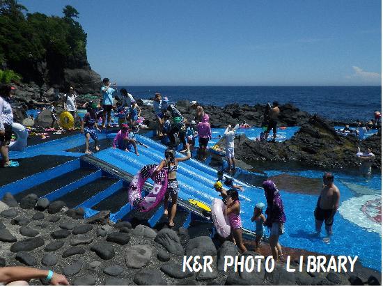 8月17日IOP海に近いプール2