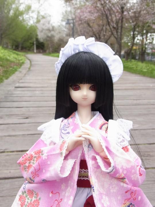 札幌ドーム 桜02