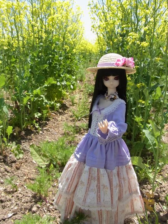 山本処理場 菜の花03