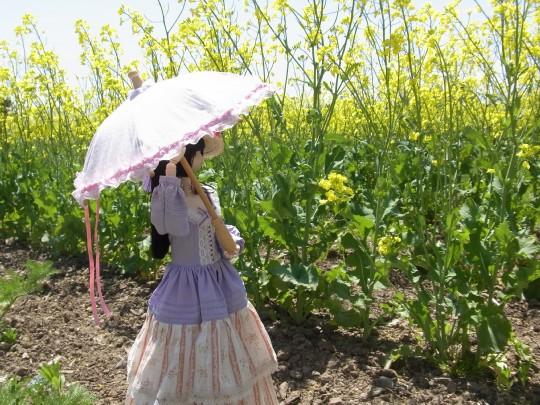 山本処理場 菜の花07