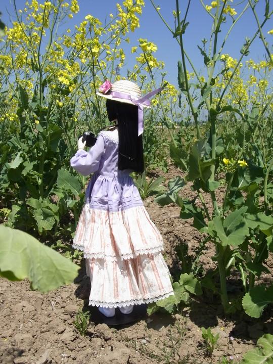山本処理場 菜の花11