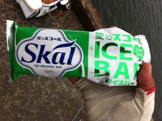 120811_ice.jpg