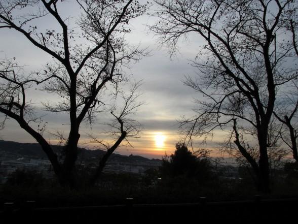 24.11.30八幡山散歩 055_ks