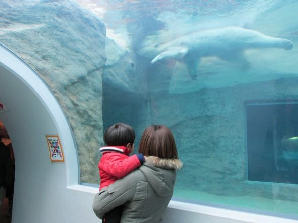25.1.6家族で動物園へ 073_ks