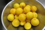 25.12.21柚子胡椒 001_ks