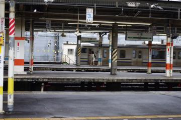 IMGP0101.jpg