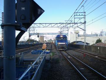 IMGP8711.jpg