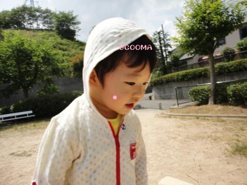DSC00011_convert_20120613015445.jpg