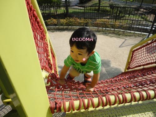 DSC00100_convert_20121020110832.jpg