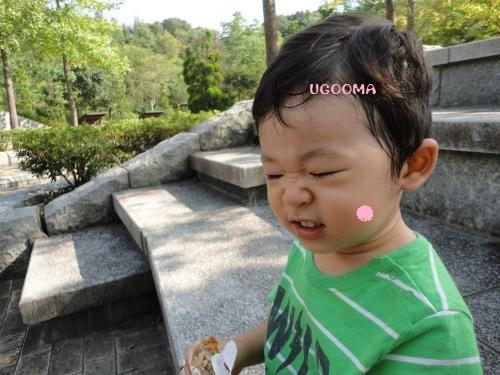 DSC00102_convert_20121020110854.jpg