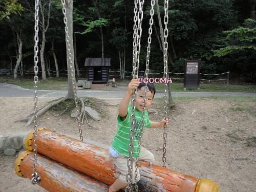 DSC00128_convert_20121020111125.jpg